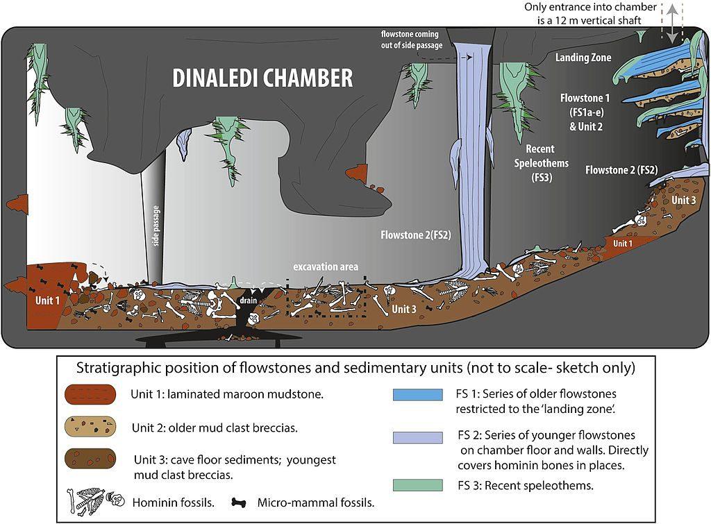 Dinaledi Chamber