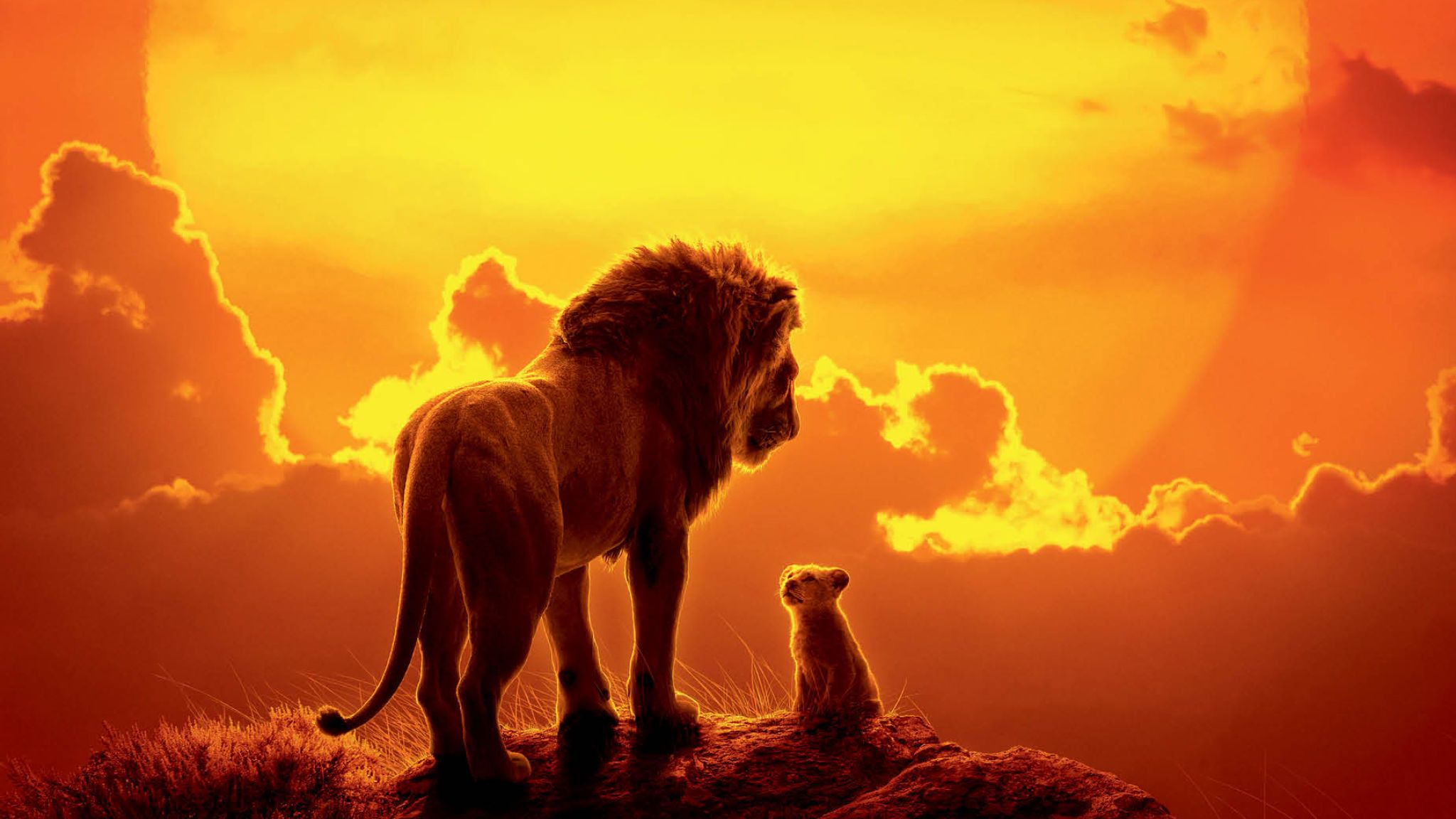 Lion King 2019 poster picture