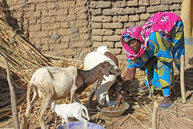 Mitigating the effects of the crisis in Burkina Faso's Centre North and Sahel region