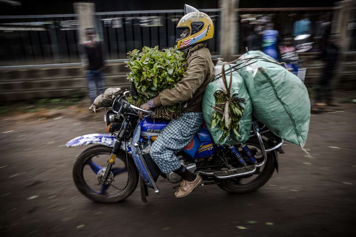 A motorbike driver leaves a market in Maua carrying miraa bunches. MUST CREDIT: Photo for The Washington Post by Luis Tato