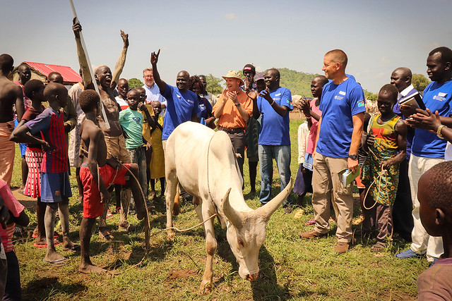 Training veterinarians and livestock specialists