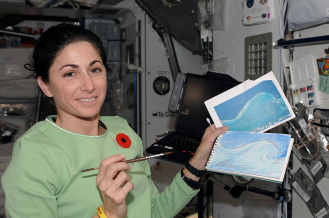 Nicole Stott's artist side, as a watercolor painter aboard the International Space Station. (Credit: NASA)