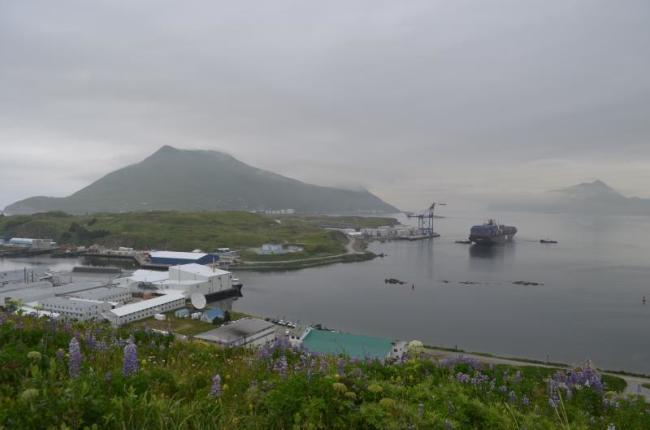 A view of Makushin in Alaska