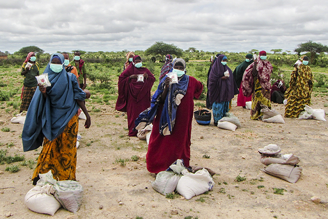 Urgent action required to prevent a major food crisis in Eastern Africa   IGAD-FAO-WFP Joint Statement