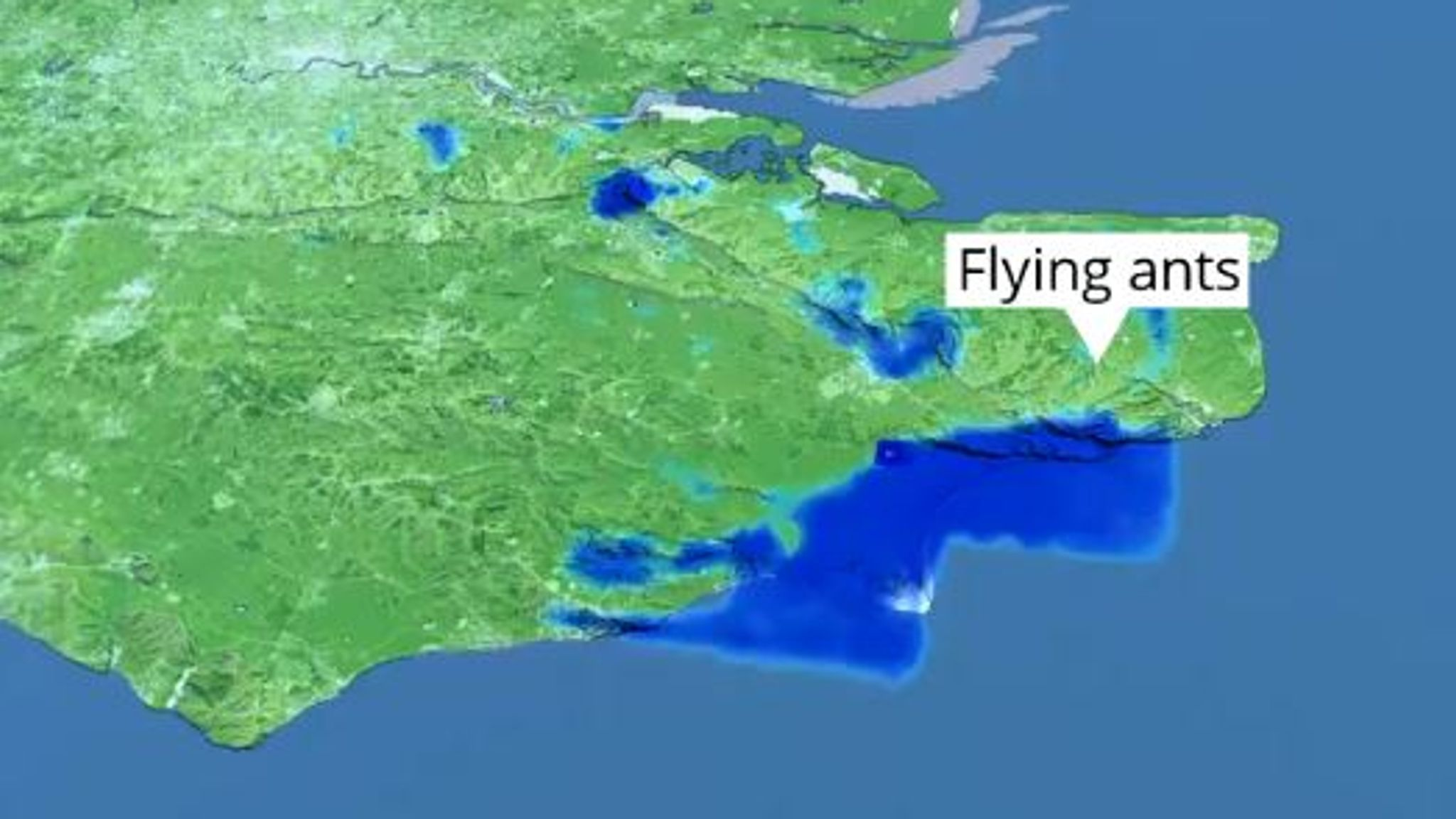 A Met Office satellite image of flying ant swarms over England