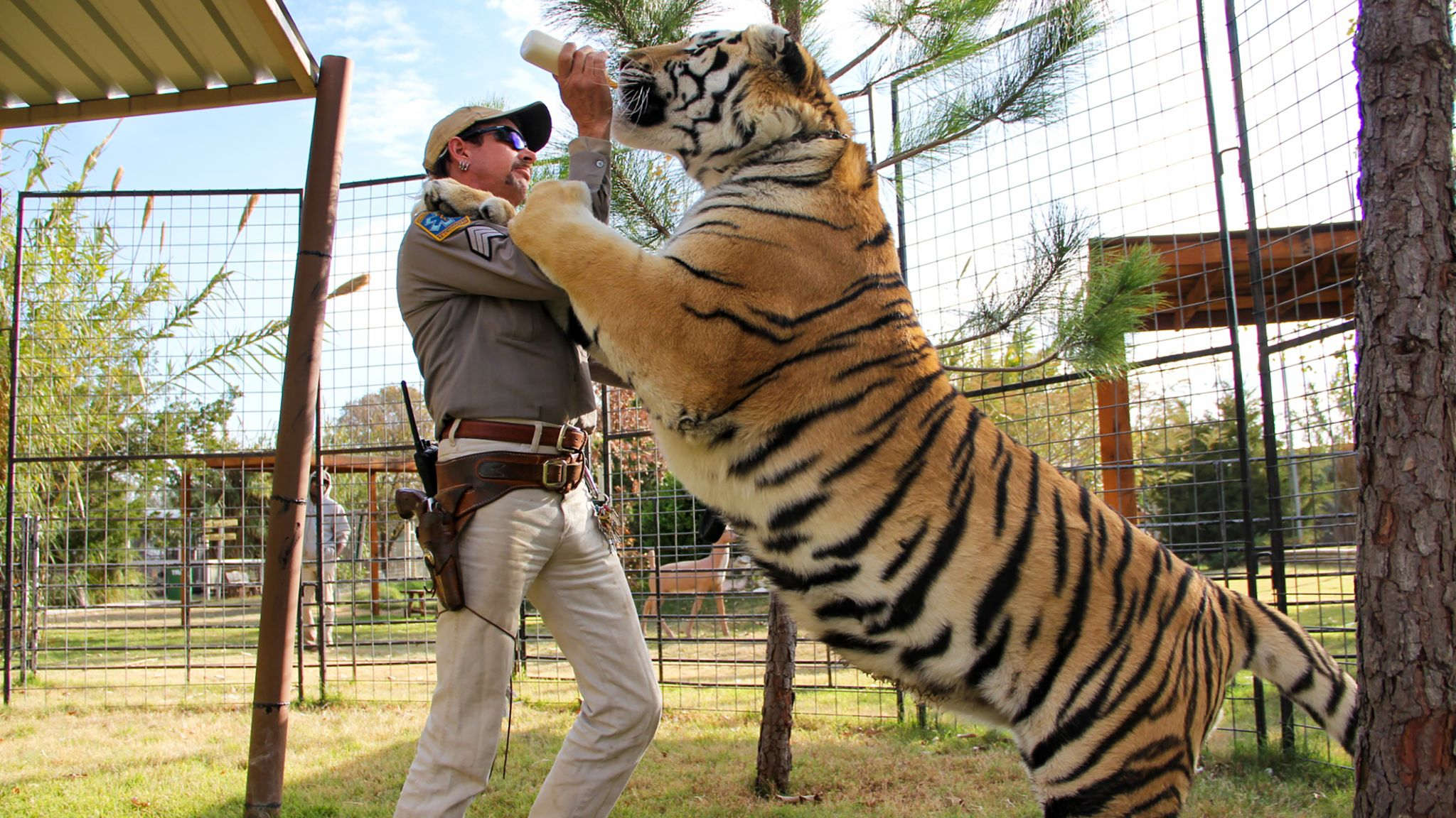 Baskin's Big Cat Rescue was granted control of Exotic's zoo in June. Pic: Netflix
