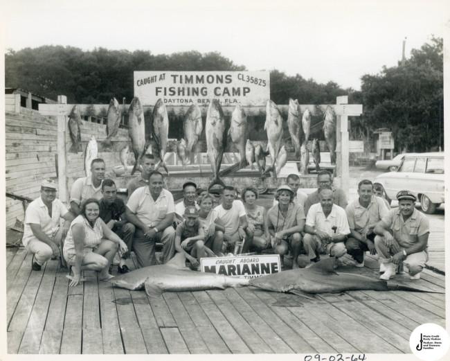 fish story fishstory marianne