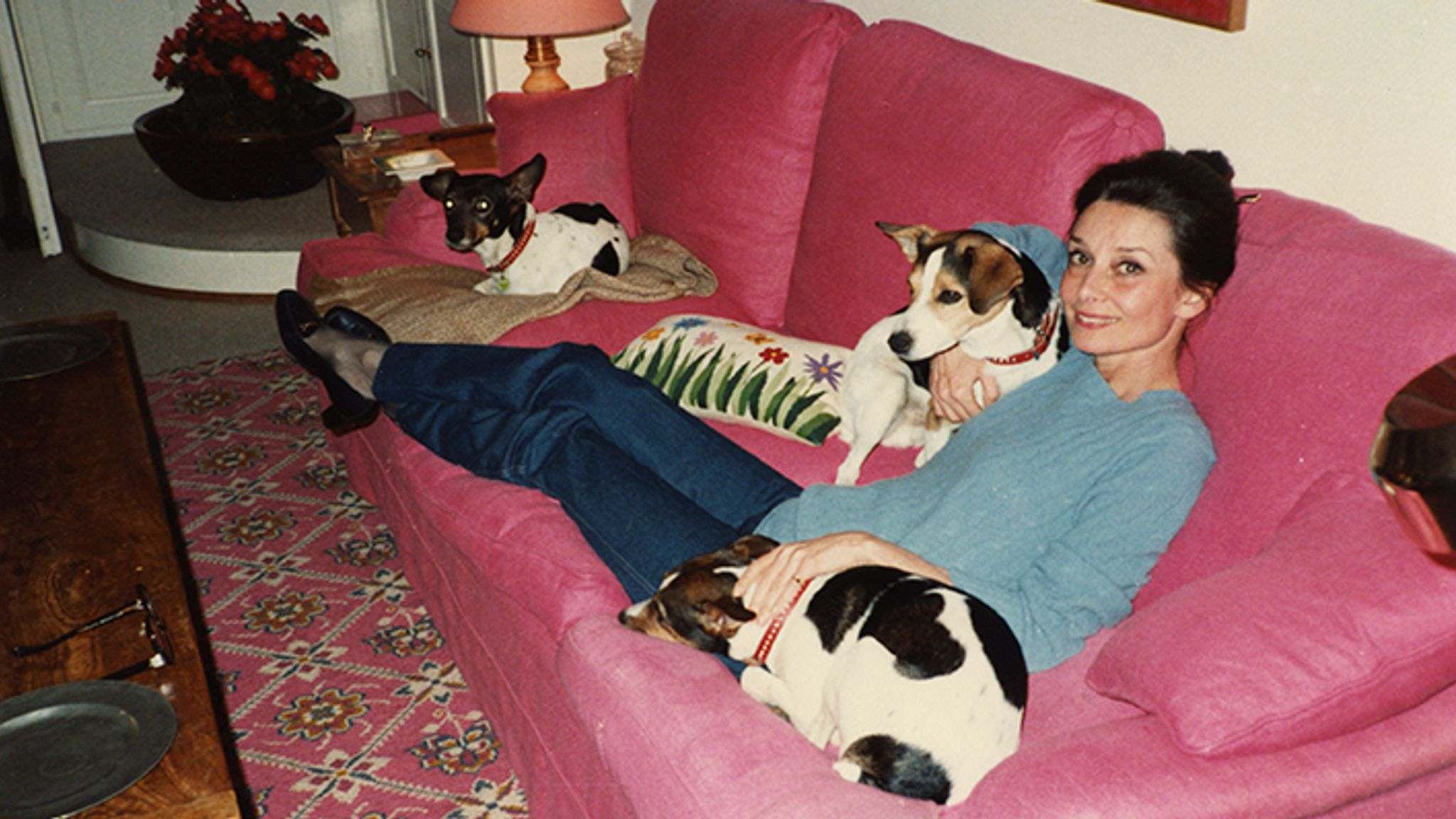 Audrey at home with her Jack Russells in 1987 {AHT caption: La Paisible, 1987.}