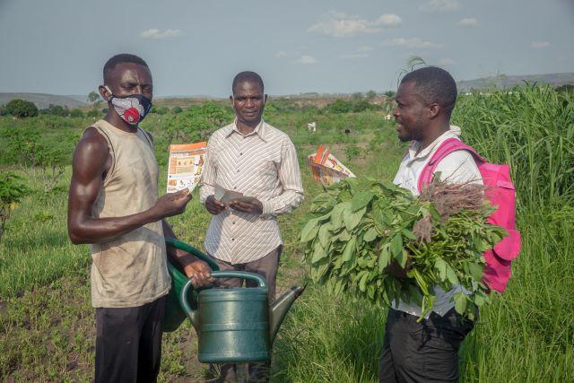 La FAO et la Belgique au soutien des ménages agricoales en situation d'insécurité alimentaire touchés par la covid-19 (IN FRENCH)
