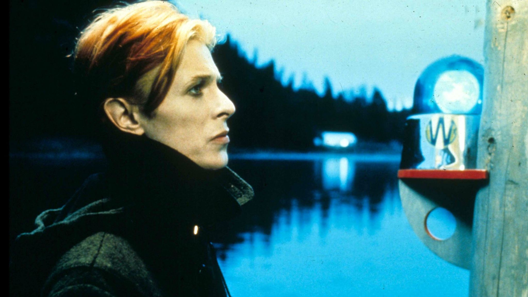 The Man Who Fell To Earth (1976). Pic: Studiocanal/Shutterstock