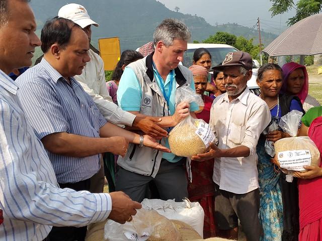Rice seed distribution