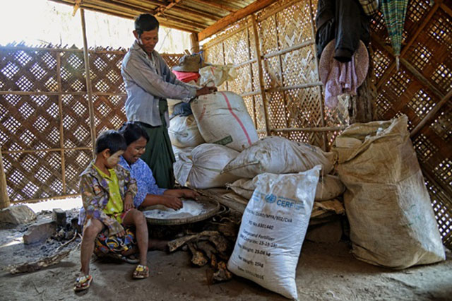FAO and UN partners bring seeds of hope to flood-affected farmers in Myanmar