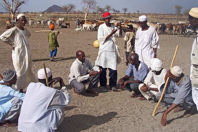 Belgium-funded project contributes to livelihoods, food and nutrition security through support to vulnerable households in West and South Darfur and Blue Nile States in the Sudan
