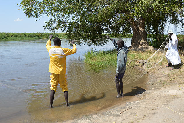 Fishing, a foundation for food security and peace in South Sudan